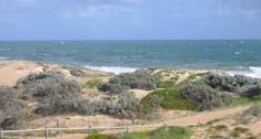 Bayshore Beach